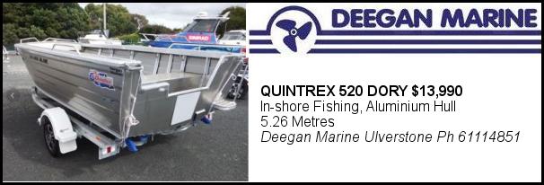 Deegan Quintrex Dory